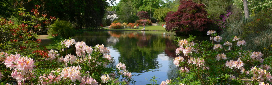 Exbury-Gardens-Top-Pond-copy-950x300
