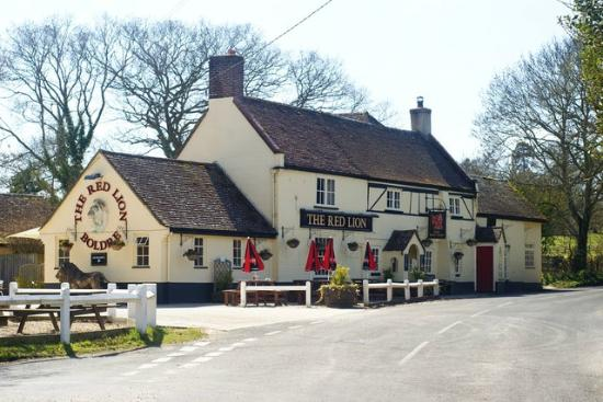 The Red Lion At Boldre
